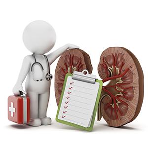 Заболевание почек лечение народными средствами