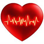 Сердце +и нервы