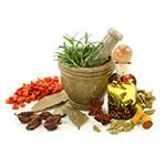 Лекарственные растения +для похудения