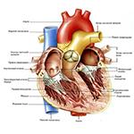 Помощь +при сердечной недостаточности