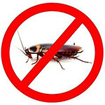 Влияние тараканов
