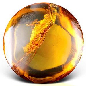 Целебные свойства янтаря