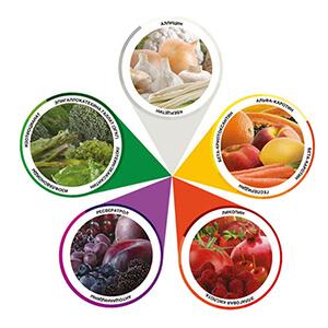 список полезных продуктов для здоровья