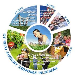 здоровый образ жизни критерии